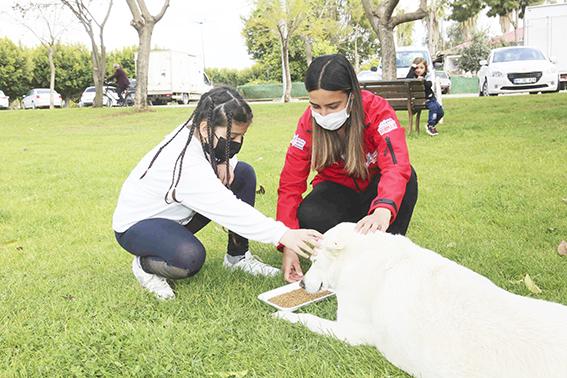Çocukların hayvan sevgisi, bilgiyle pekiştirildi