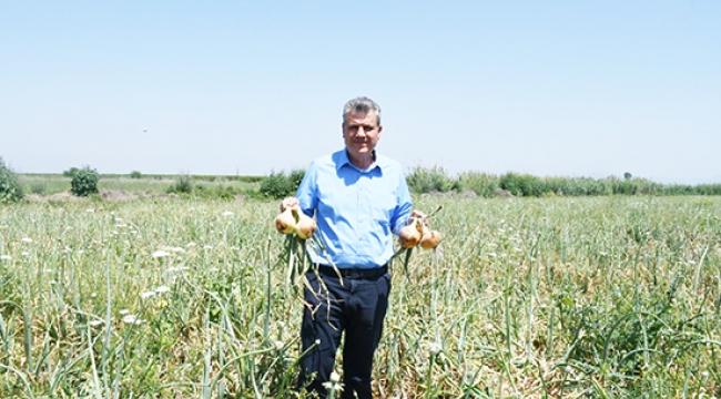 Ayhan Barut, maliyetini bile çıkaramayan soğan üreticileriyle tarlada buluştu